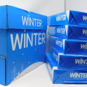 WinterPaper1